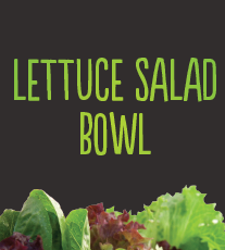 Lettuce Salad Bowl