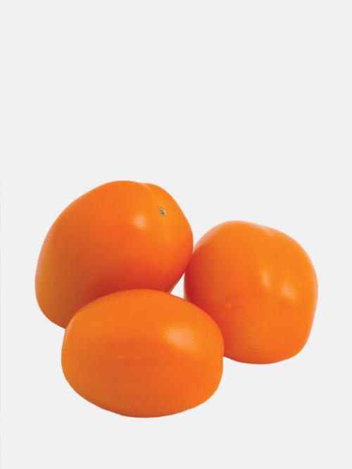 cerino-tomato.jpg