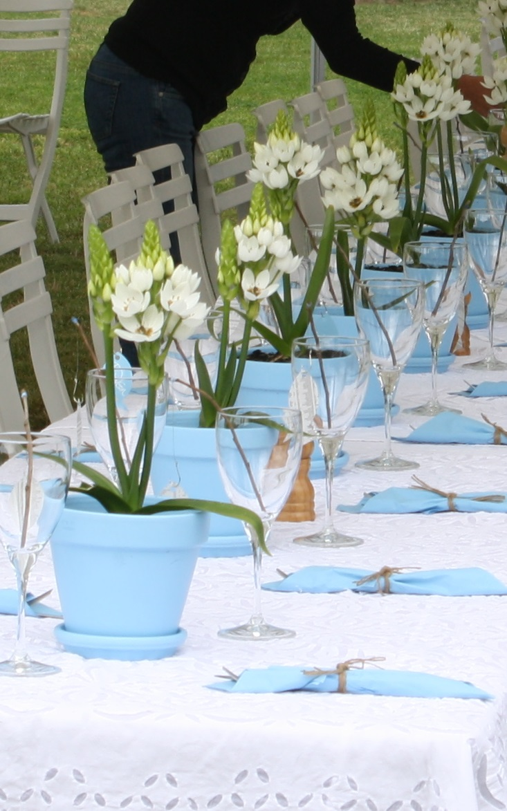 Ornithogalum Table Decoration.jpg